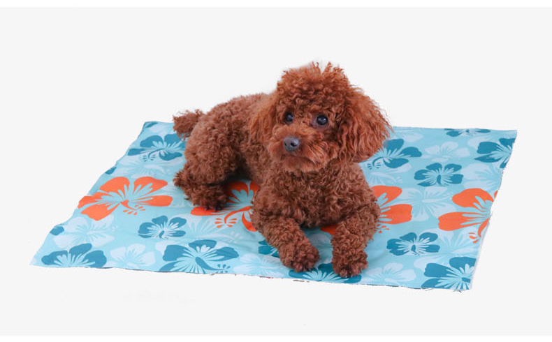 Discountbest quality with lowest pricepet supplies/products,pet cooling mat/ cushion from China