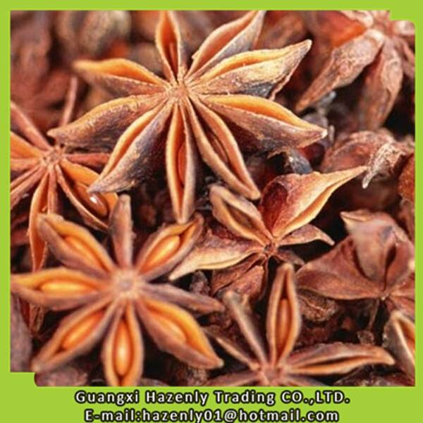 factory supplier spice of star aniseed