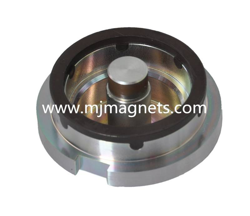 Plastic PPS+NdFeB injection bonded neodymium magnet