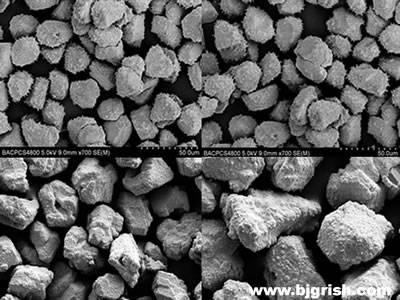 Nickel Coated Diamond Powder