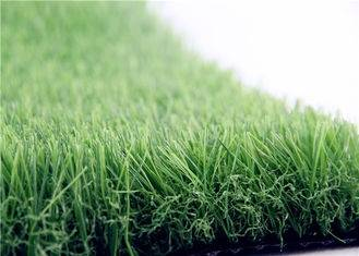 Lawn Grass Olive