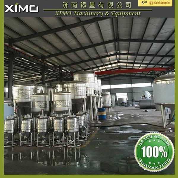 Mini beer brewery equipment 100L 200L 300L 500L
