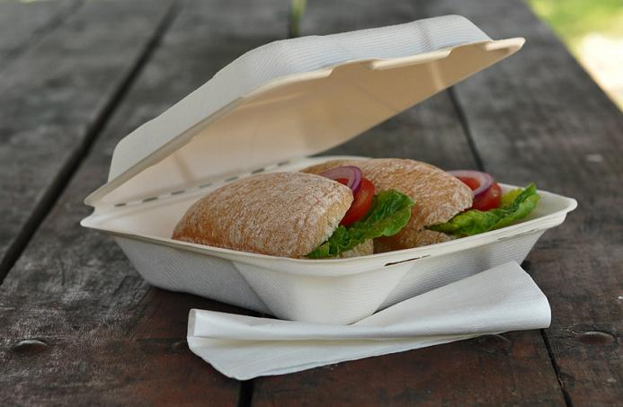 6 Inch Lunch Box Compostable Disposable Fast Food Container