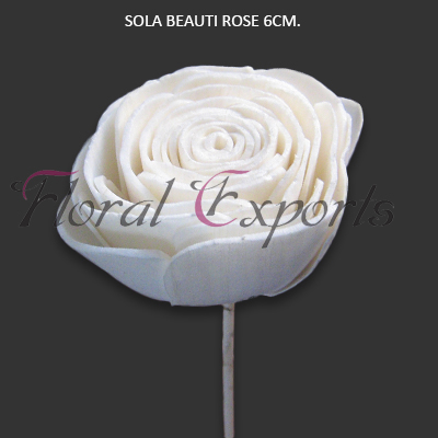 Sola Wood Beauty Rose 6cm on Stick