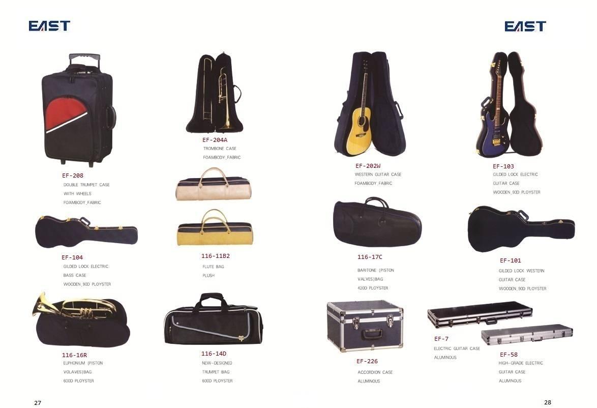 guitar bag and hardcase