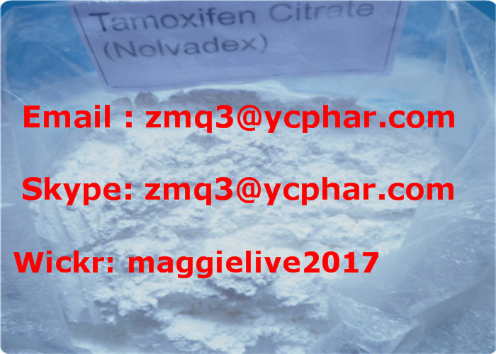 Wholesale Price Nolvadex/Tamoxifen Citrate Powder with High Quality CAS: 54965-24-1