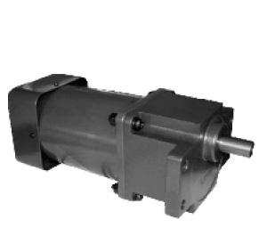 AC Gear Motor(YN90-125)For Package Machines,Ice-crusher Etc.