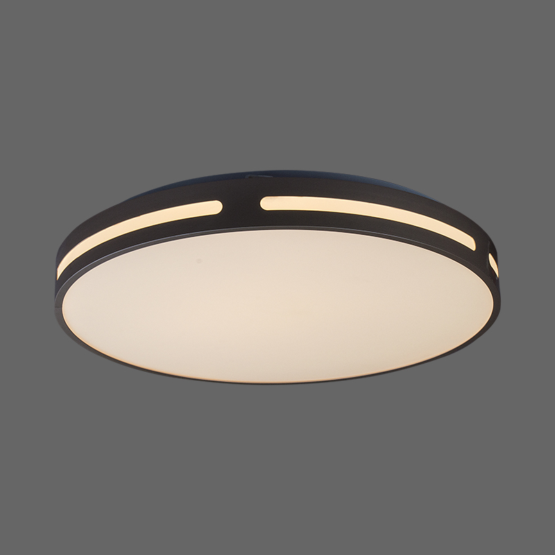 Hot Sell Round Ceiling Flush Mount Lights For Home