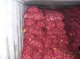 Onion, Bangalore Rose Onion, Bellary Onion wholesaler