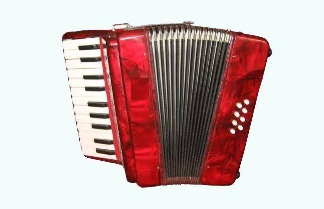 Piano Accordion 22Key 8Bass