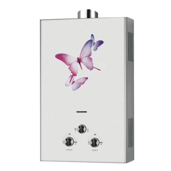 New Design Tankless Flue & Forced Type Gas Water Heater