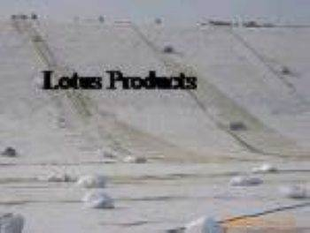 Stable Polyester Geotextiles