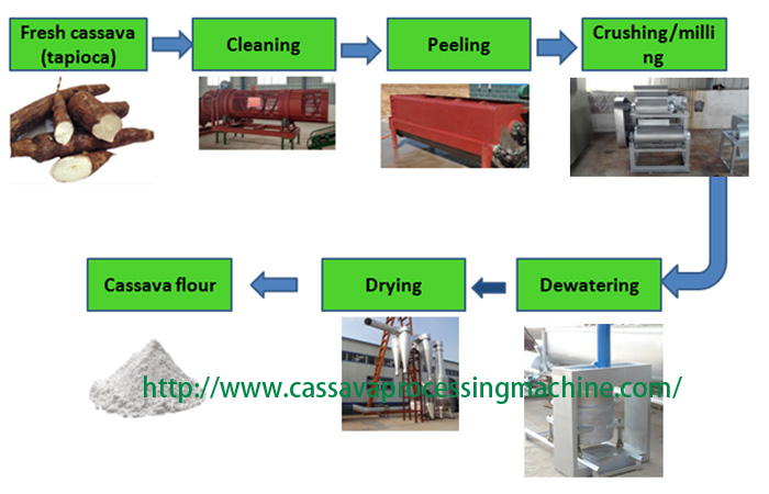 Machines for making high quality cassava flour