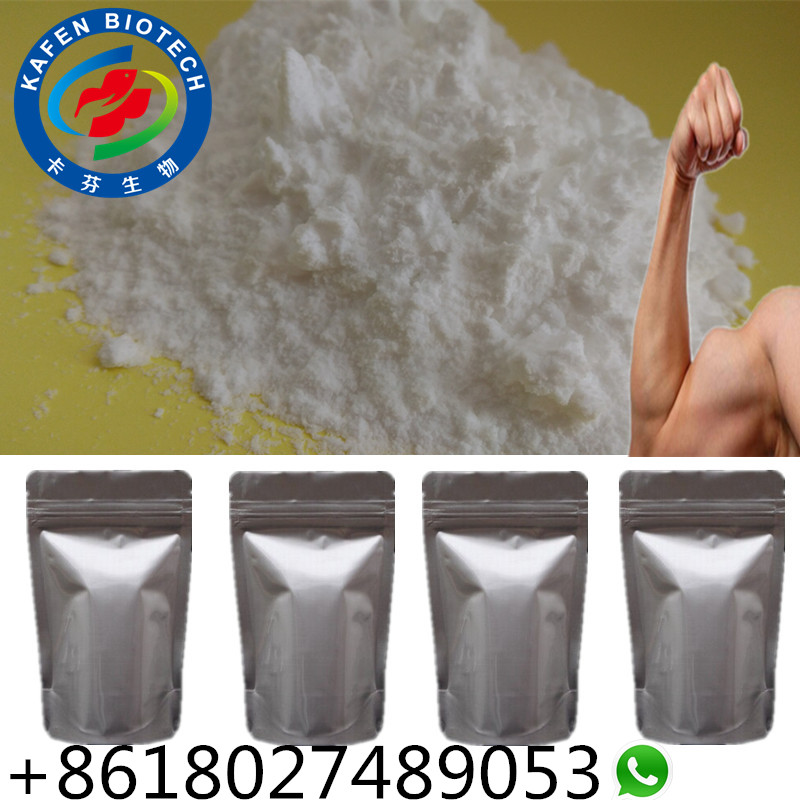 Anabolic Steroid Testosterone Phenylpropionate Test Phen TPP 1255-49-8 For Bodybuilding