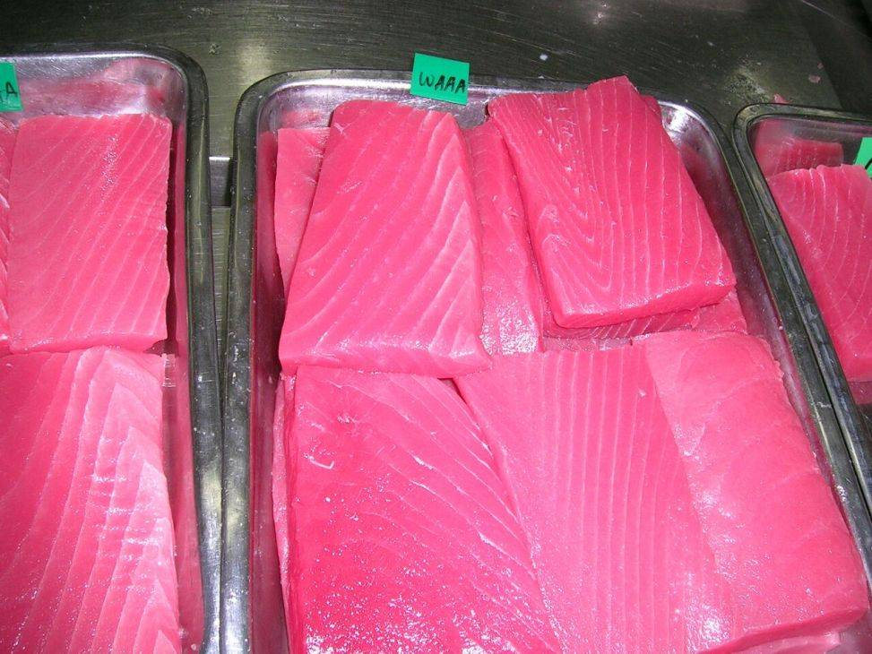 Processed Tuna - Frozen Saku Blocks Tuna