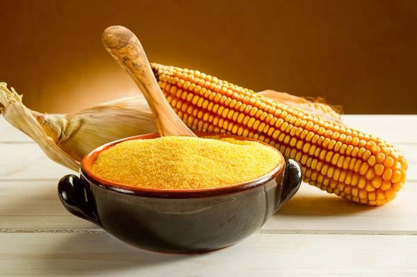 corn, corn grits, corn maize