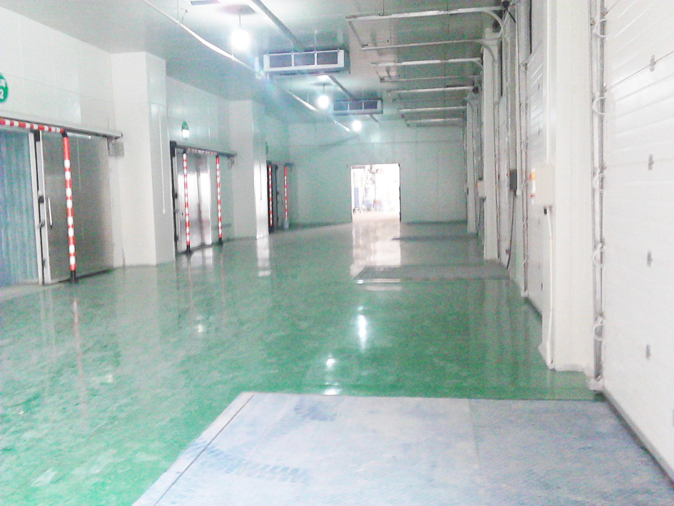 warehousing,rack,distribution center,cold room rent