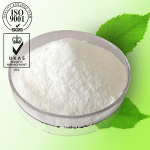 Pharmaceutical Raw Material 99% 2-Chloronicotinic acid CAS: 2942-59-8