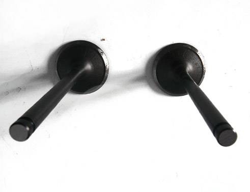 BMW Intake & Exhaust Valves