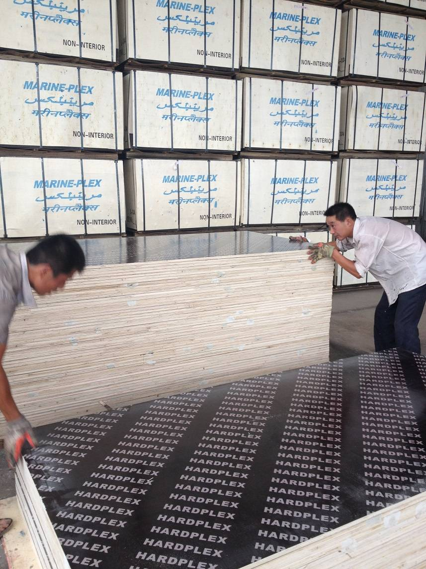 Professional film faced plywood manufacturer to egypt