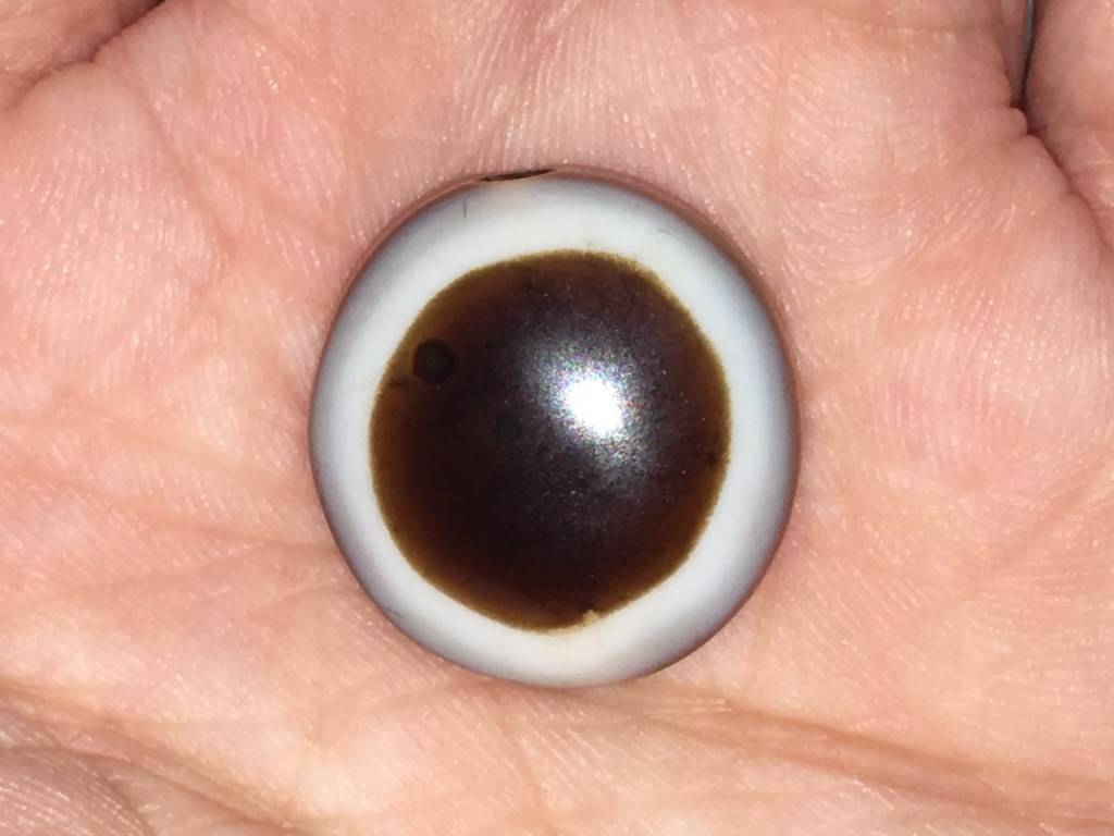 Wholesale Luk Mik Tabular Goat's Eye Beads