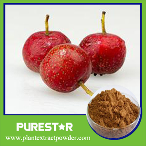 Hawthorn Leaf Extract,Flavonoids