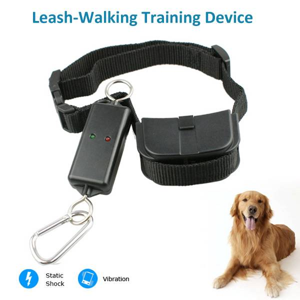 PET889 Leash-Walking remote training collar