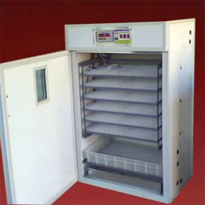 egg incubator machine 12000 gold