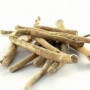Ashwagandha Extract South African nightshade extract