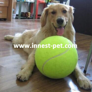 Good Price Silicone Rubber Ball for Dog Pet Toy Ball