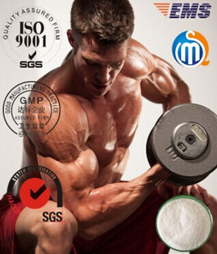 Methandrostenolone / Dianabol Musclebuilding Steroids 72-63-9