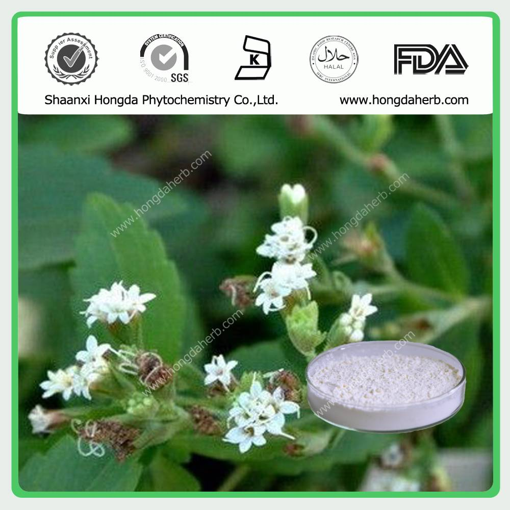 Stevia Leaf Extract 100%pure powder Stevioside 80% 90% 95%