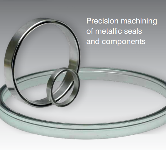Ring Joint Gasket-Soft iron
