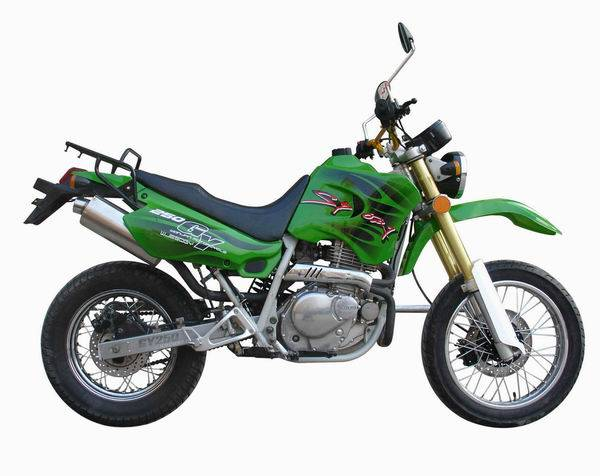 Supply Motorcycle/Dirt Bike/Cuiser Bike WJ250GY EEC