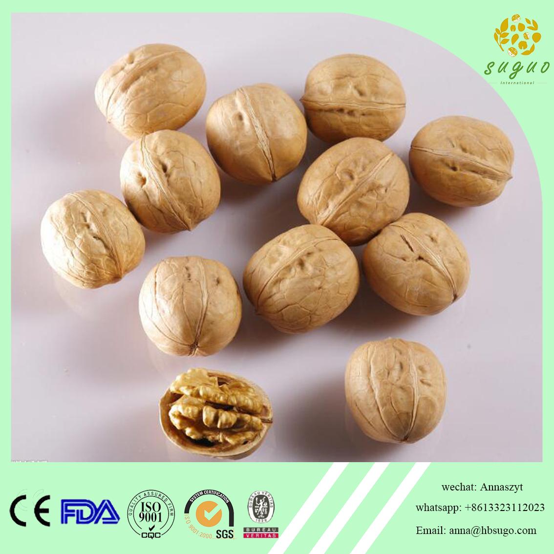 2017 crop extra light walnut in shell