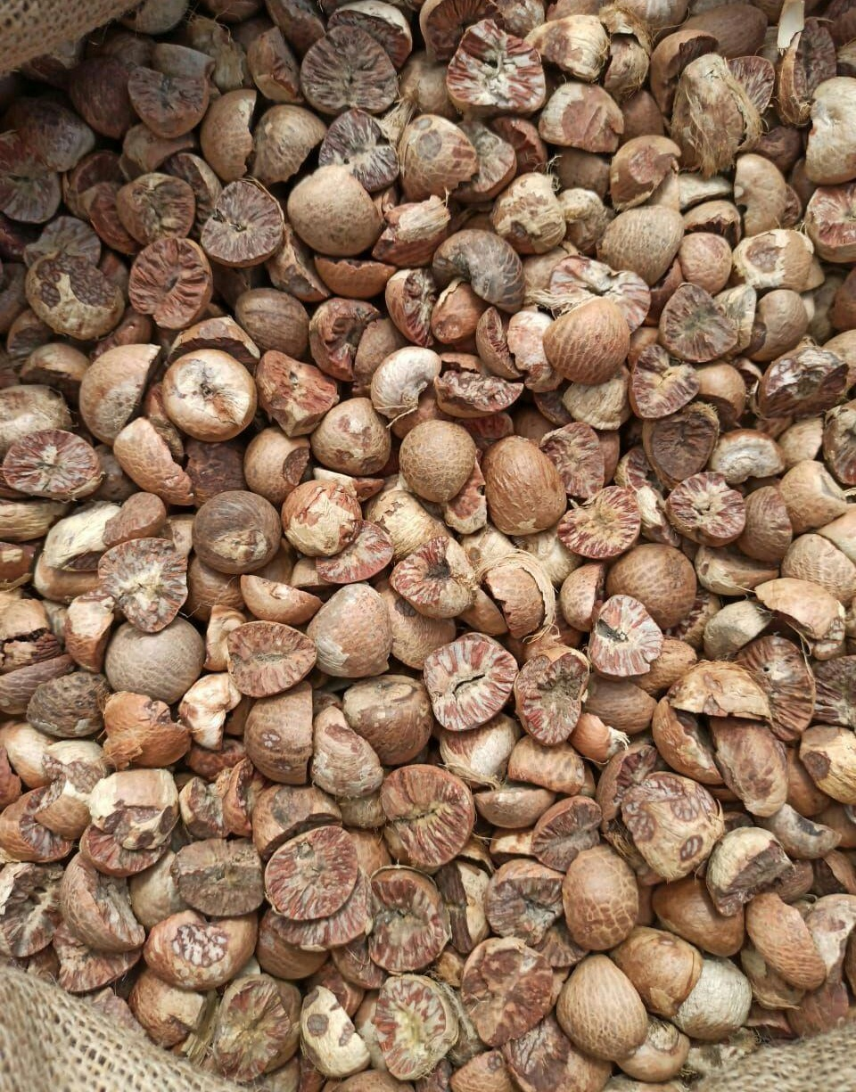 Dried Split Betel Nut and Whole Betel Nut