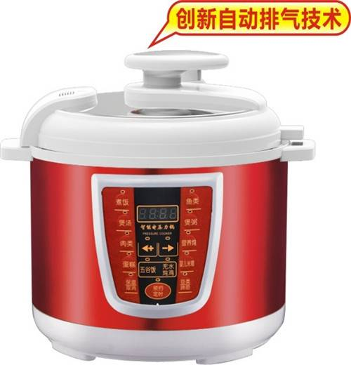 Atrractive Electric Pressure Cooker with Digital Control good price ZH-A05