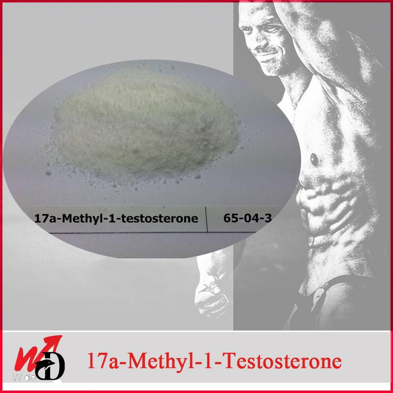 For Bodybuilding Supplements CAS No. 65-04-3 17A-Methyl-1-Testosterone
