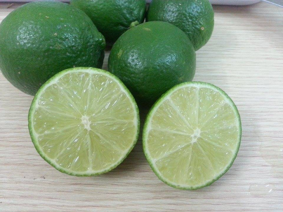 FRESH LEMON / LIME