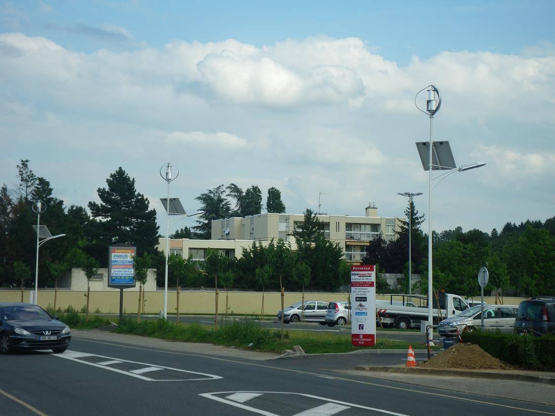 300w wind generator with street light system(200w-10kw)
