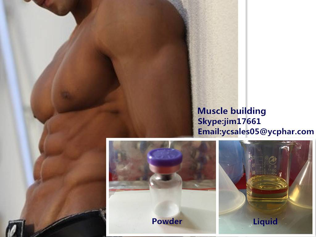Protein Powders L-Leucine For Musclebuiding