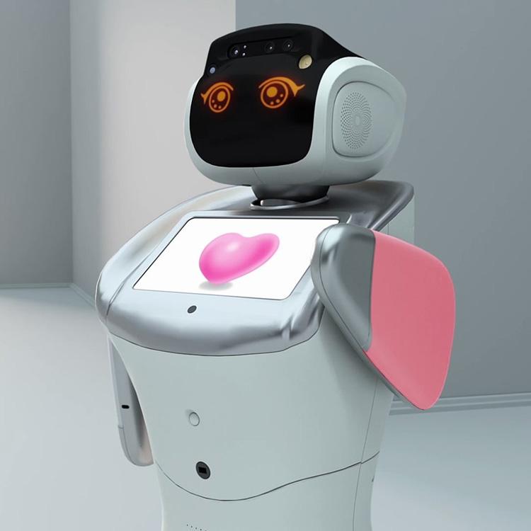 open API platform robot for vertical developers