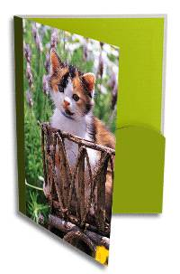 3d promotion printing , 3d sticker , 3d postcard, lenticular 3d