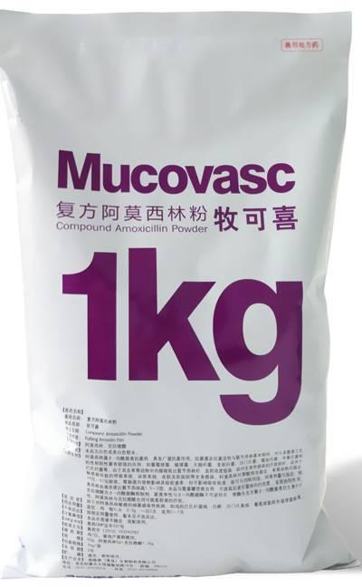 compound amoxicillin powder