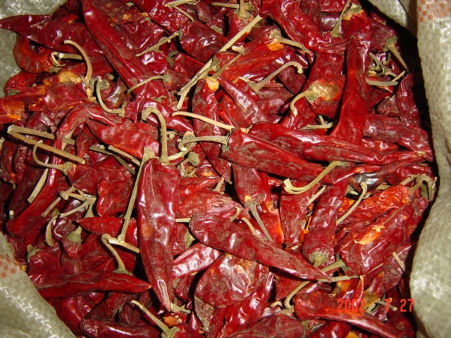 dried chillies,red pepper
