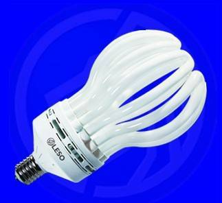 NEW: lotus energy saving lamps with CE & ROHS