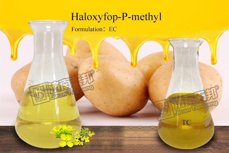 Haloxyfop-P-Methyl 108g/L EC