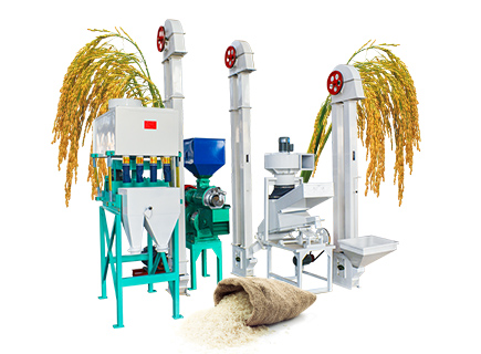 Professional Mini Rice Mill Plant for sale