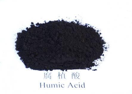 2016 hot sale black powder humic acid from China