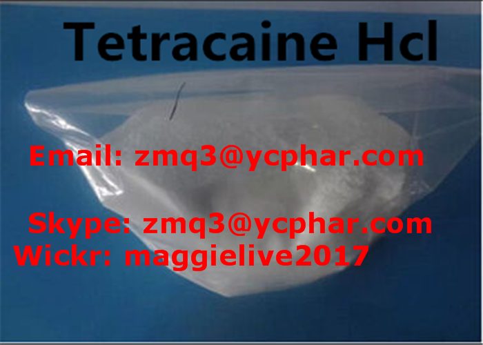 Tetracaine Hydrochloride 136-47-0 Medical Local Anesthetic Drugs Pain Killer